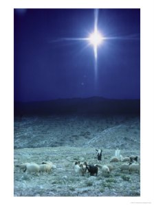 131218shepherds-watch-their-flocks-under-the-light-from-a-distant-star-near-bethlehem-israel-posters1