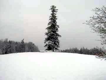 snowy_hill1