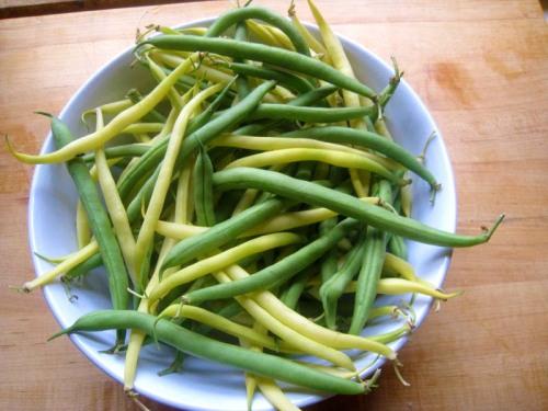 green+beans
