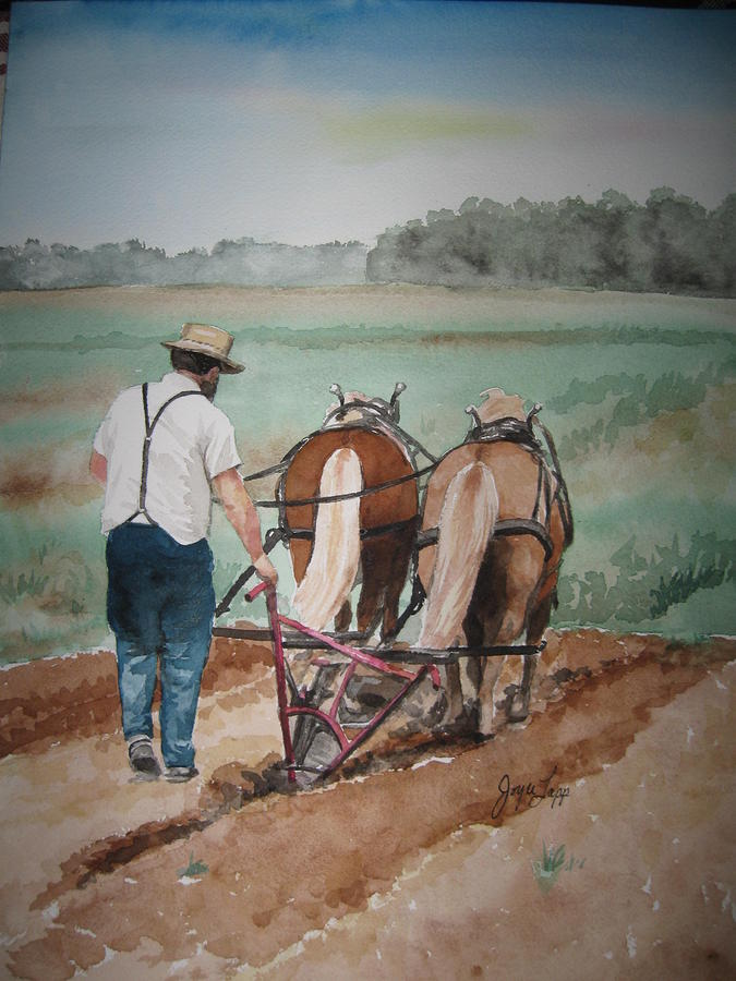 plowing-the-field-joyce-lapp