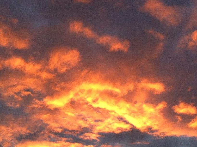 sunrise529