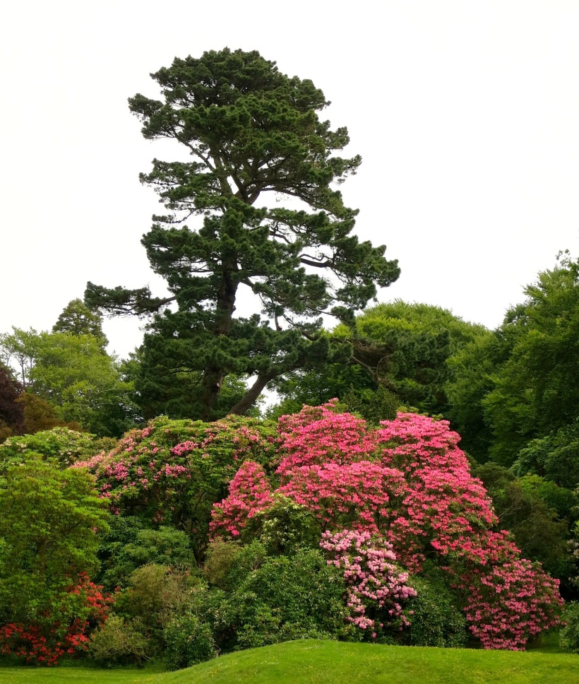 Rowellane Park, County Down, Northern Ireland