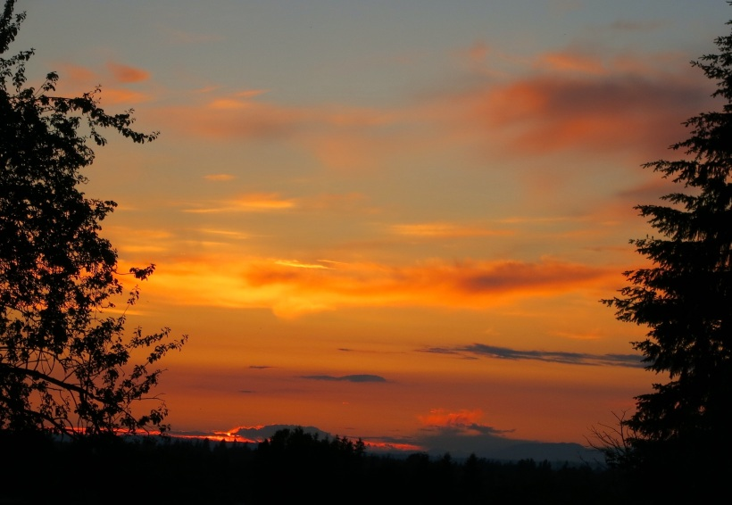 sunset6121
