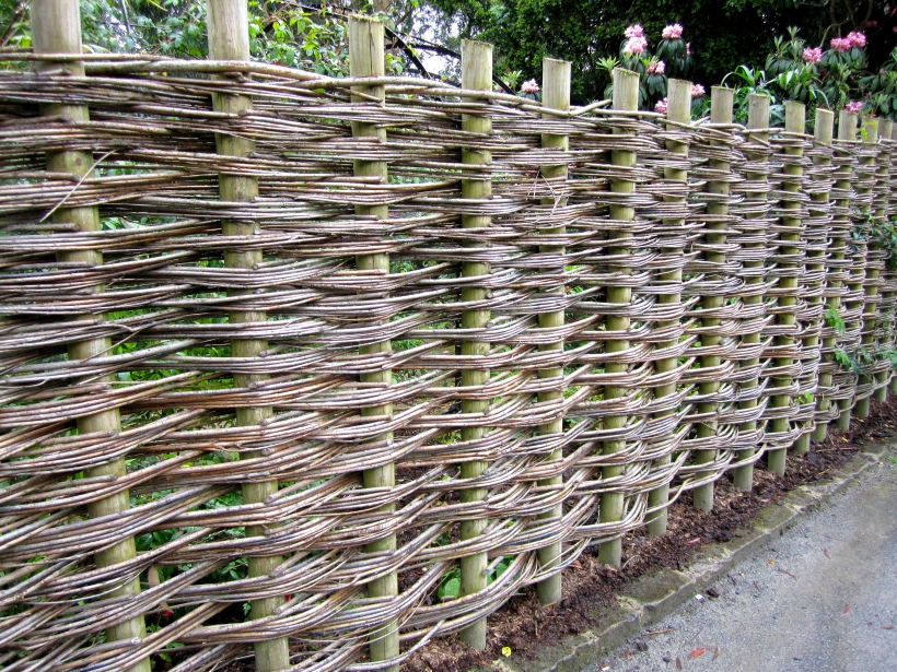 willowfencedan
