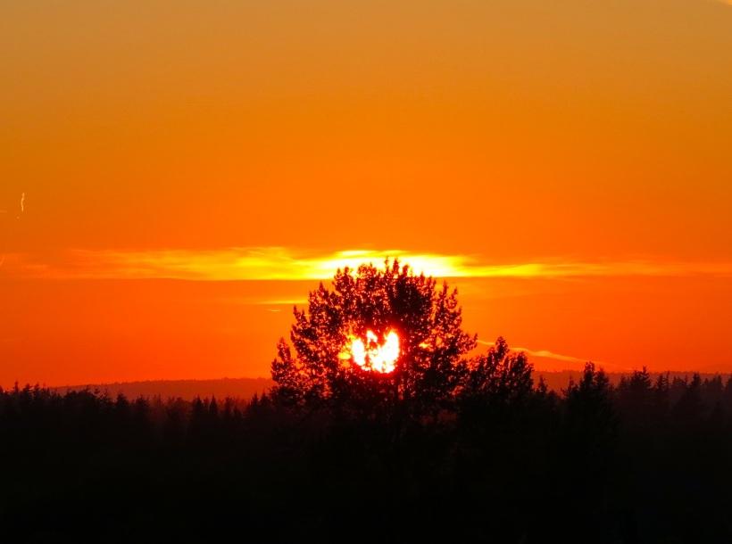 sunset7:8