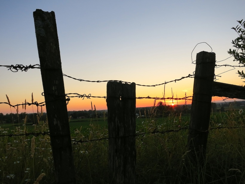 sunsetfence