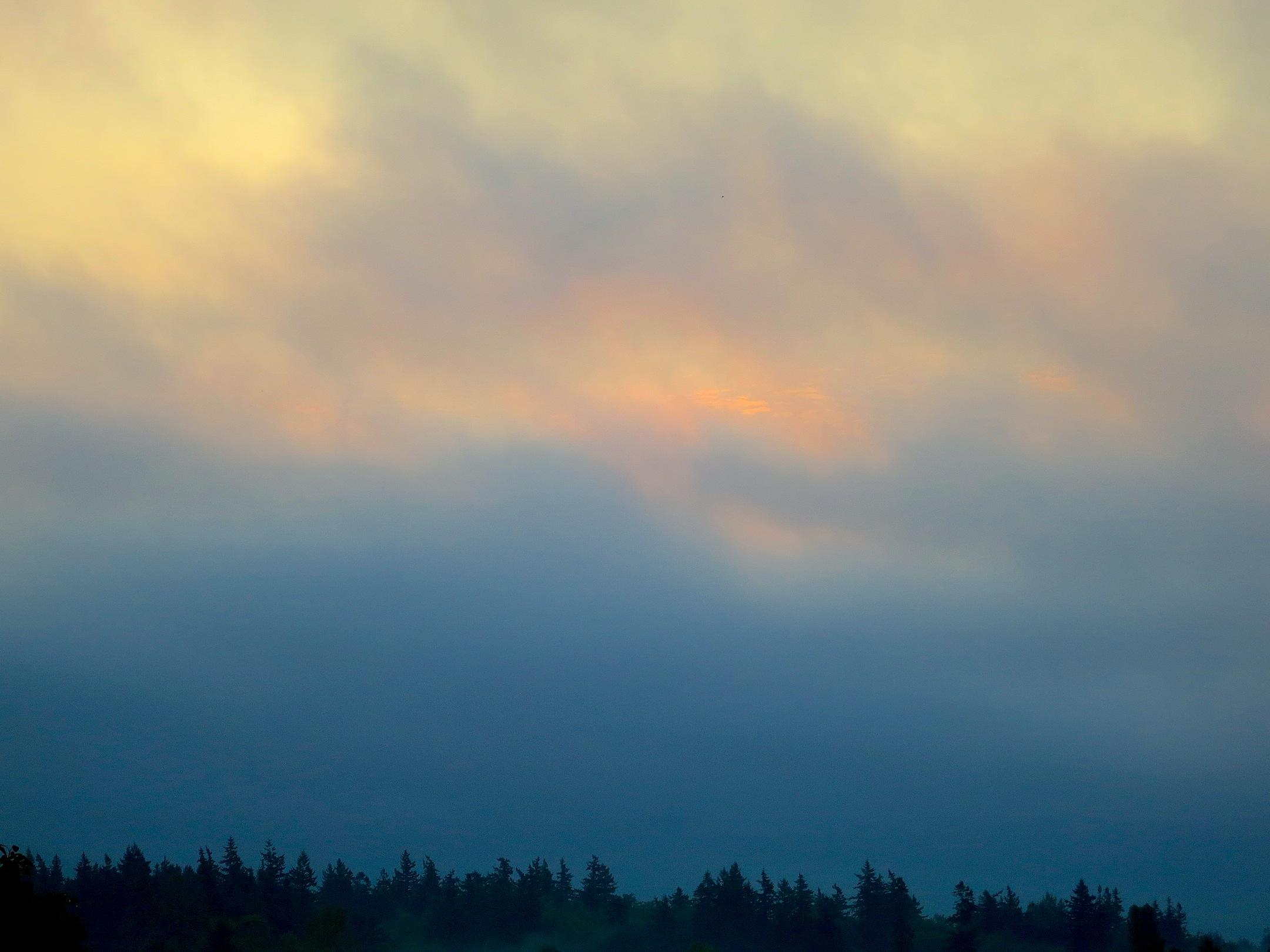 sunrise81