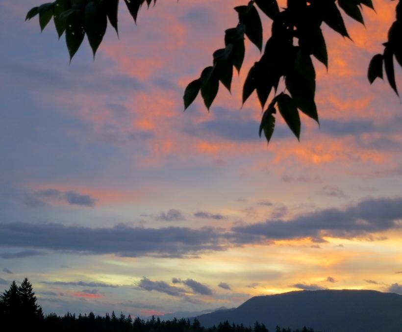 sunrise8273