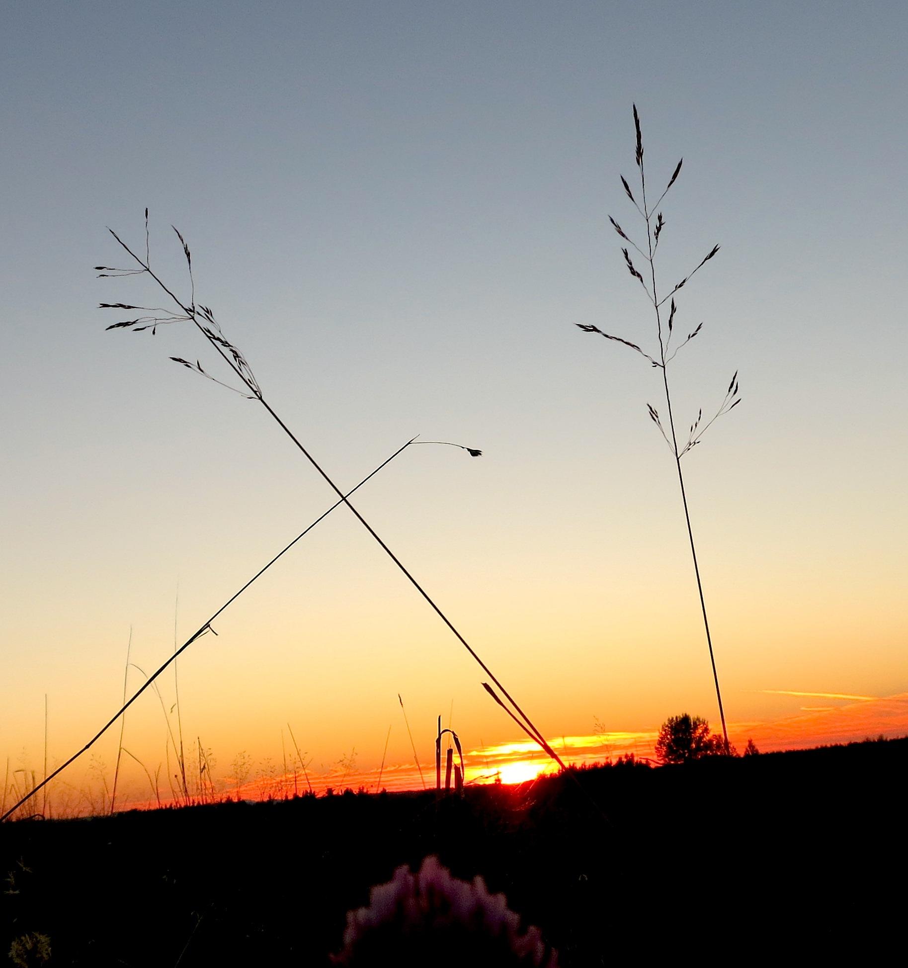 sunset83110