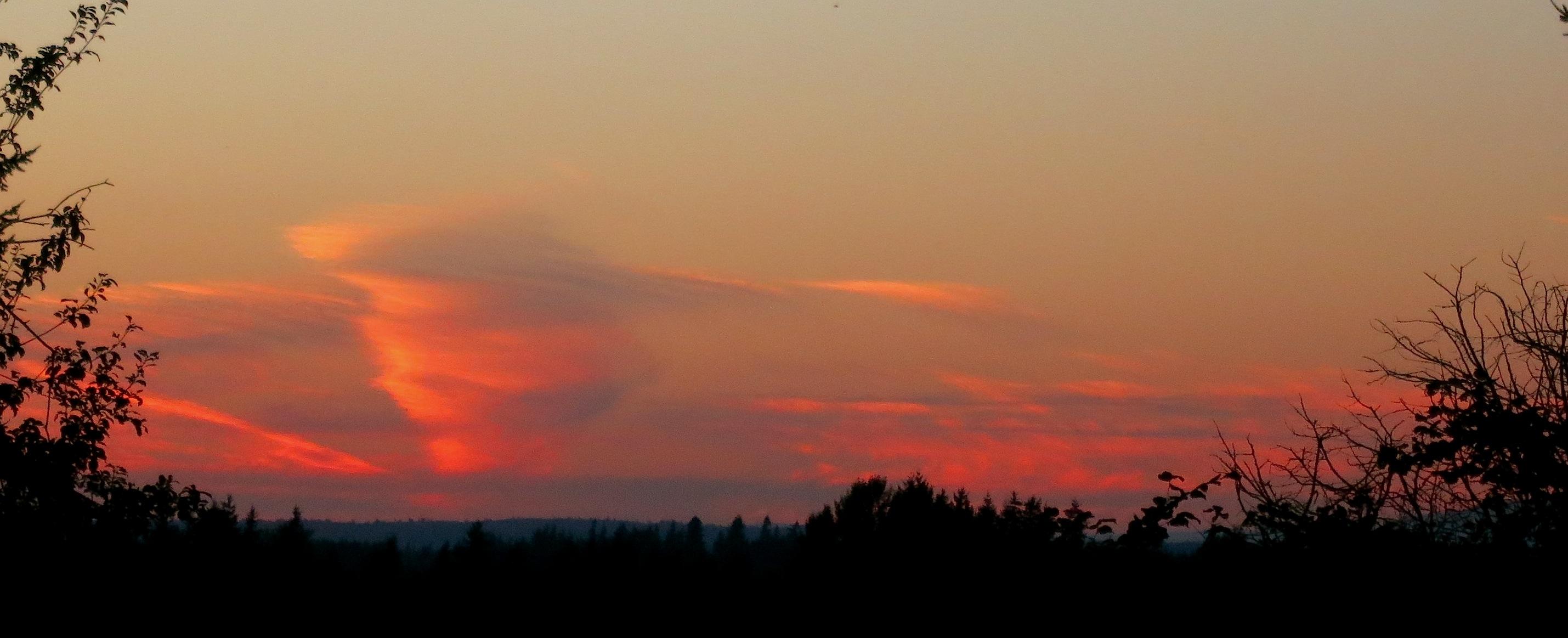 sunset8319