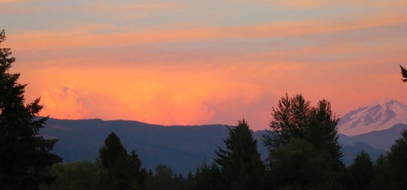 sunset8413