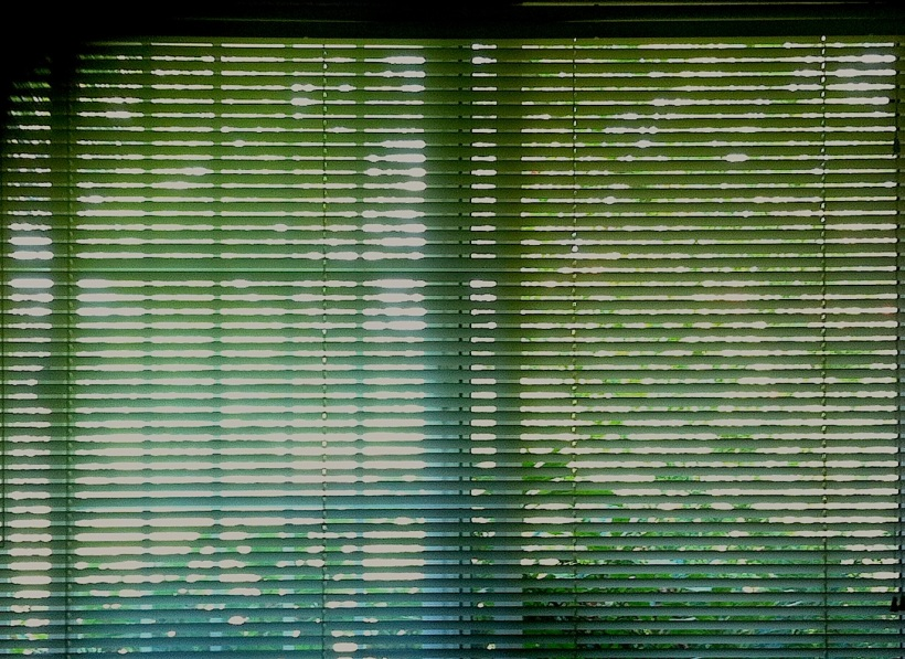 afternoonblinds