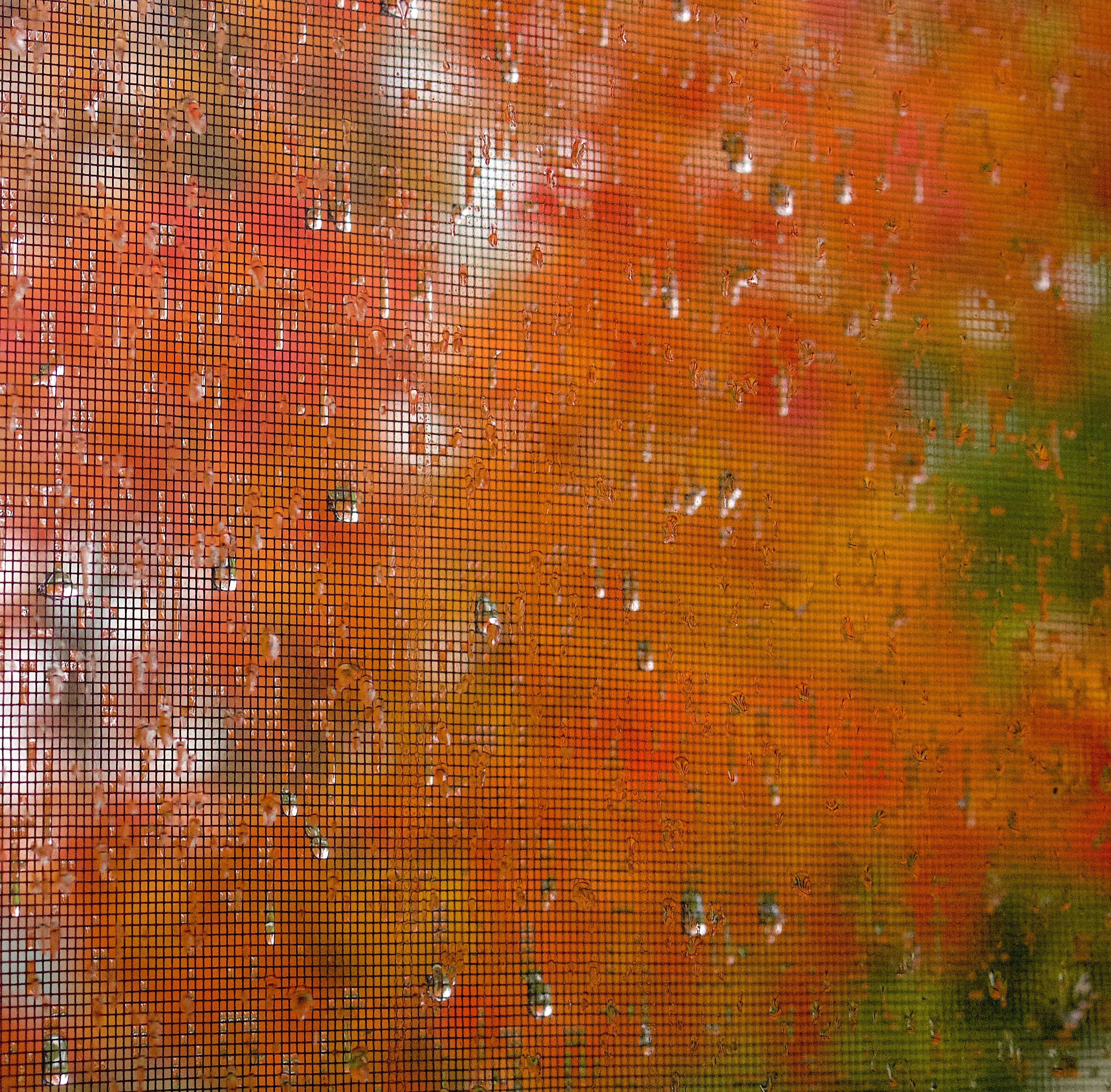 rainydaymaplescreen2