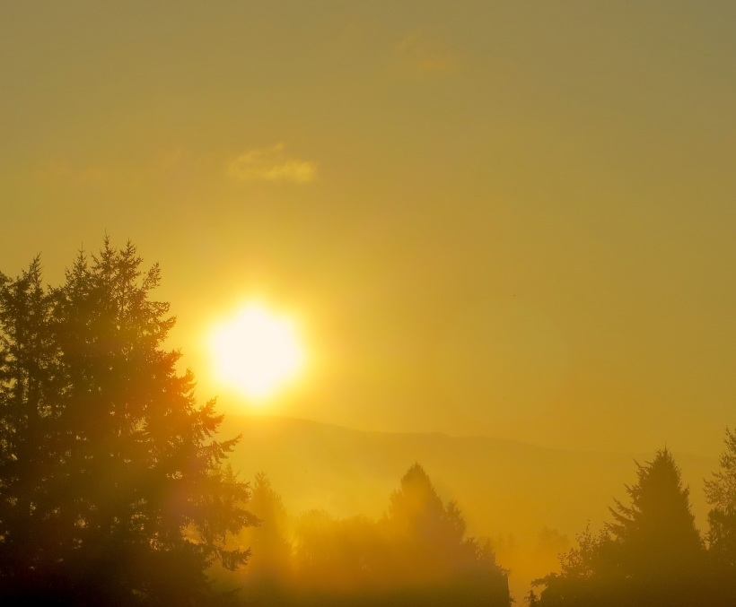 sunrise913