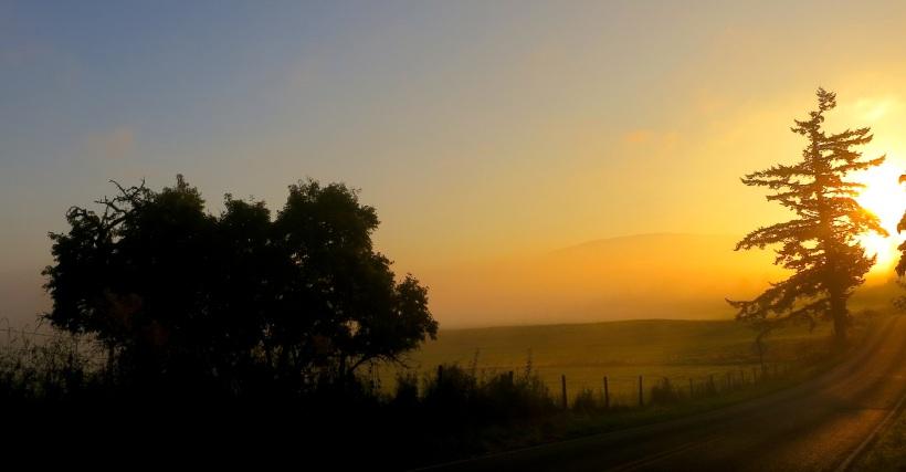 sunrise9131