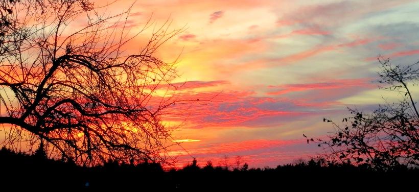 sunset11234