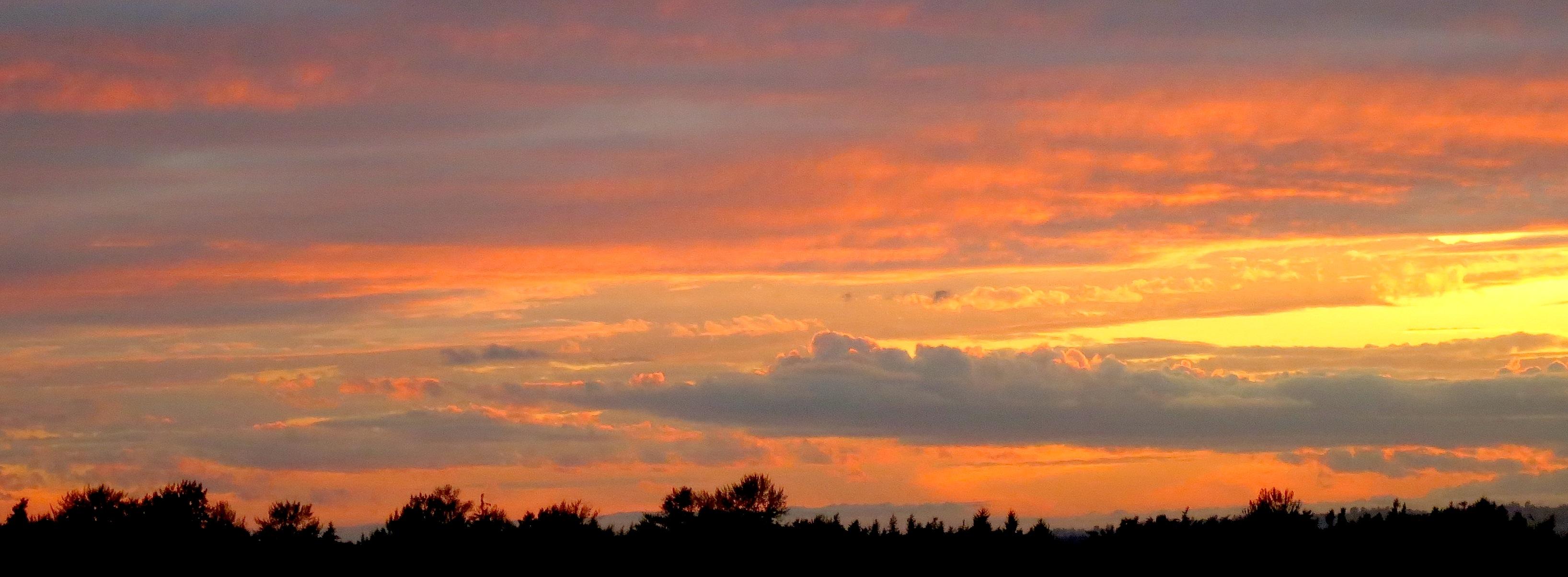 sunset9161
