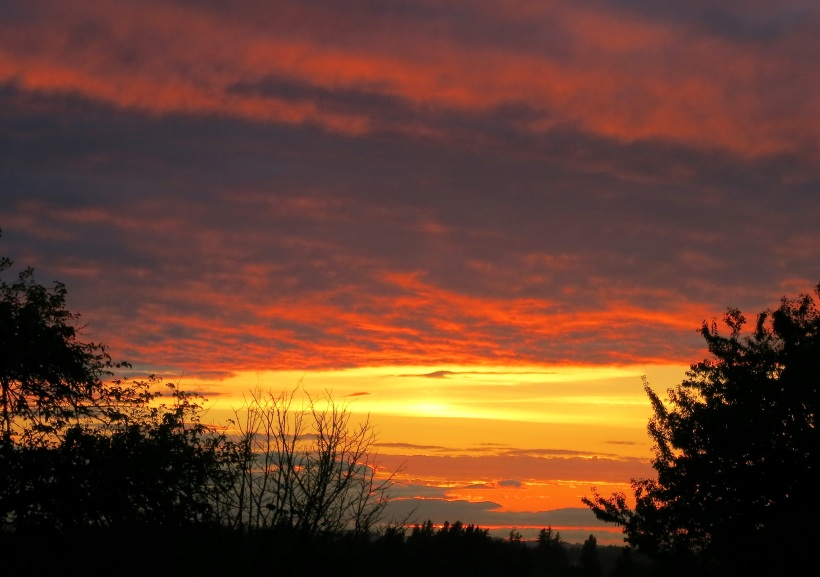 sunset9162