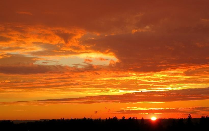 sunset962