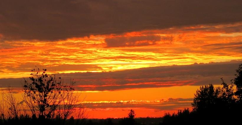 sunset966