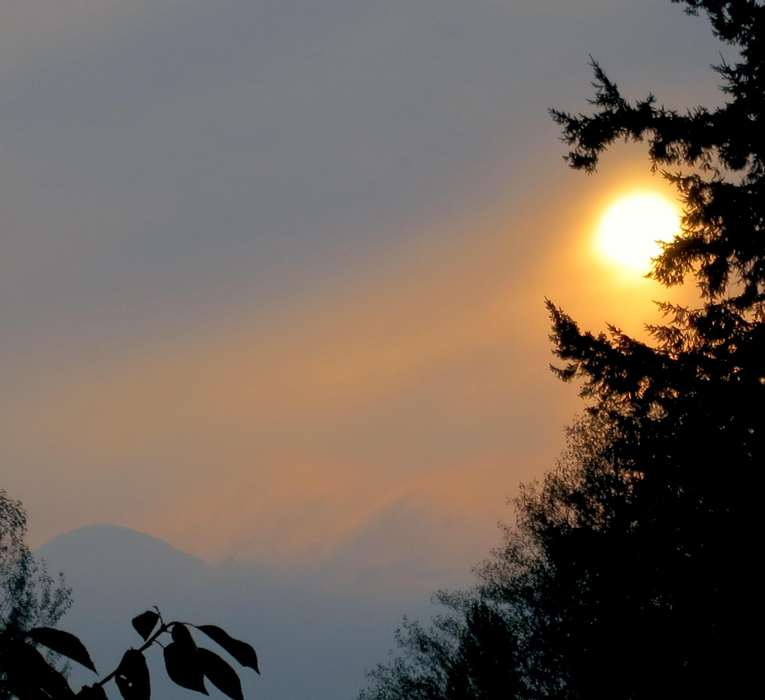 sunrise10128