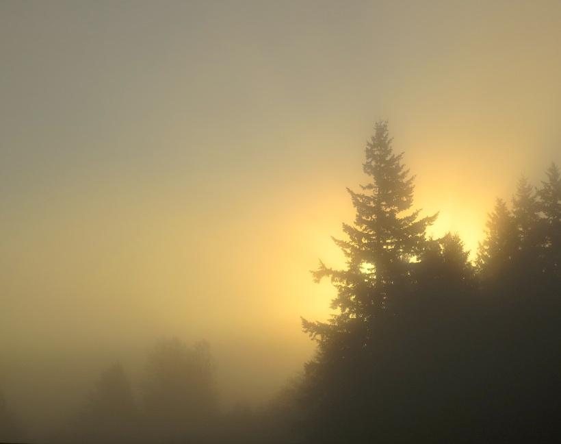 sunrise1019