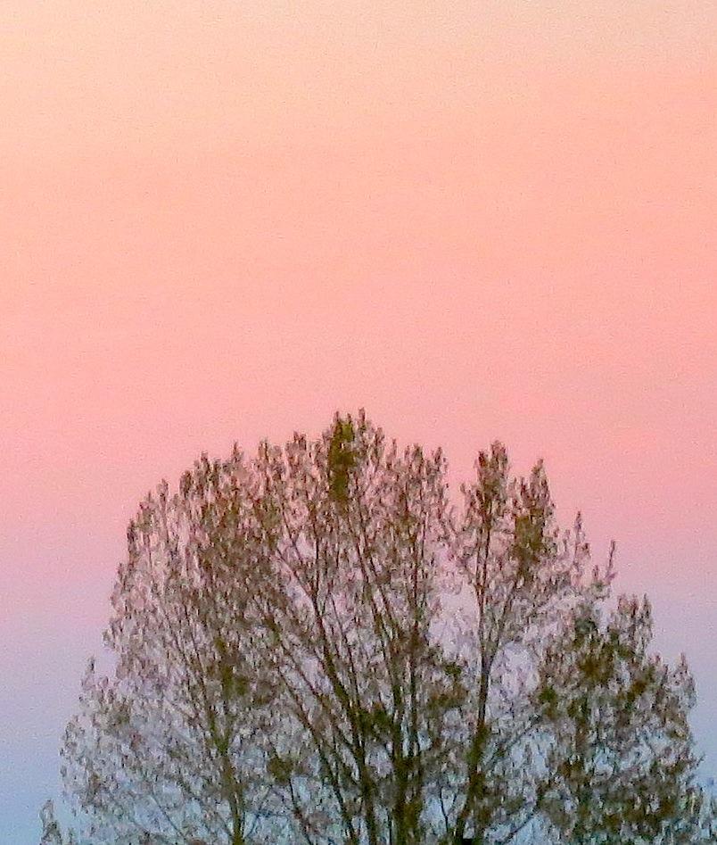 sunrise1062