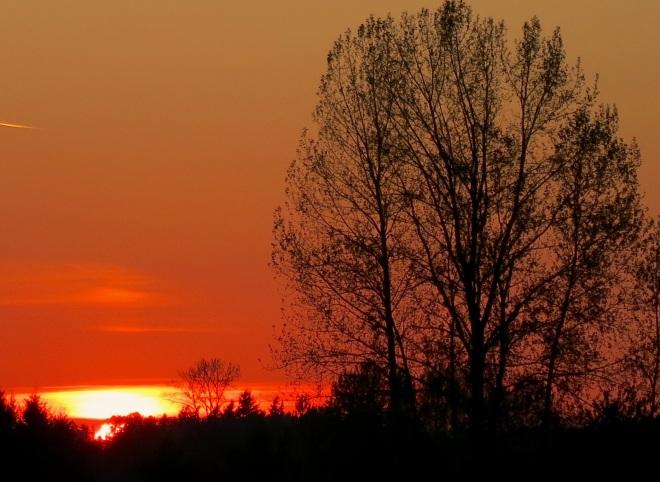 sunset10142