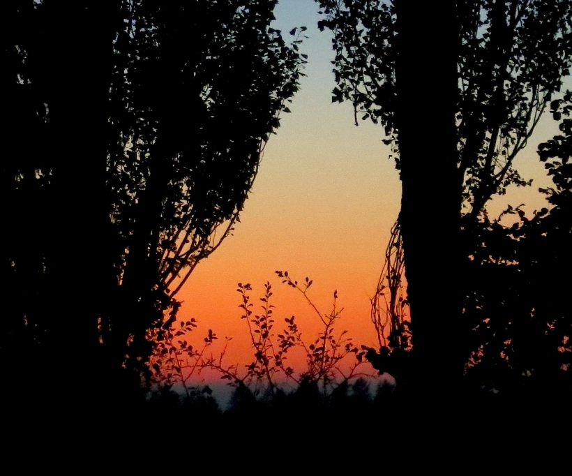 sunset10224