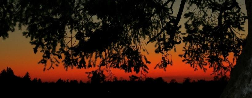 sunset1023