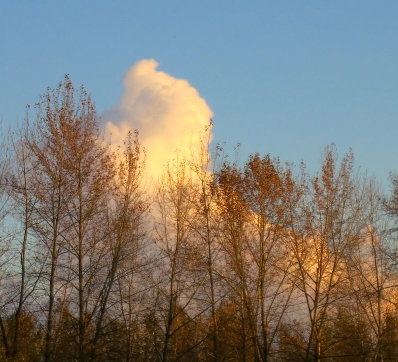barecloud