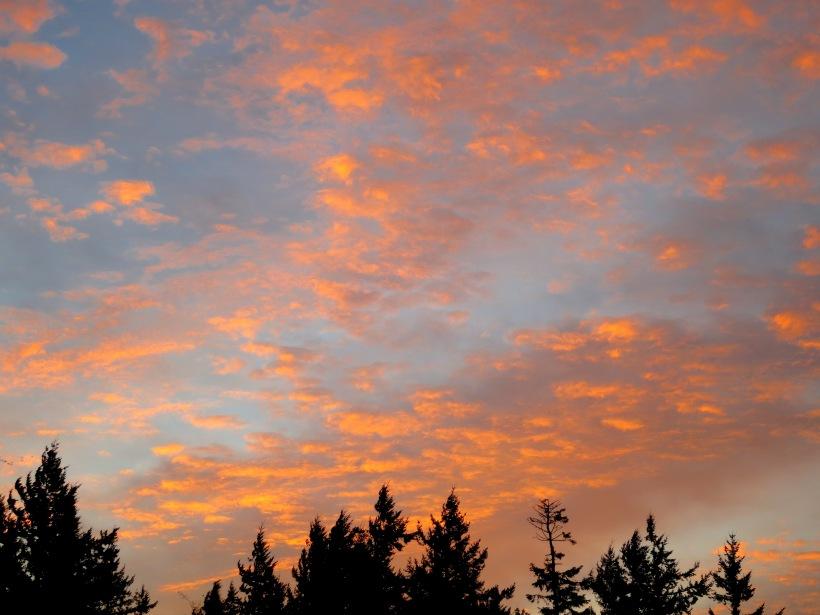 sunrise11112