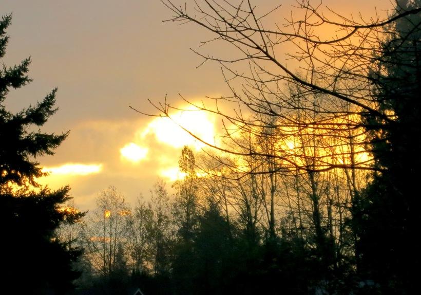 sunrise1133