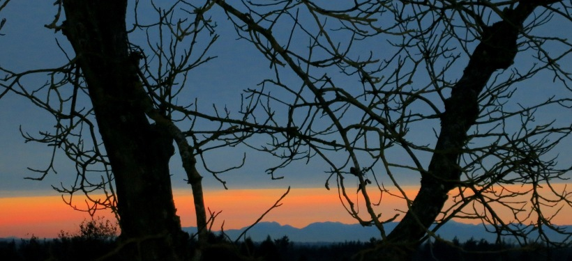 sunset1110