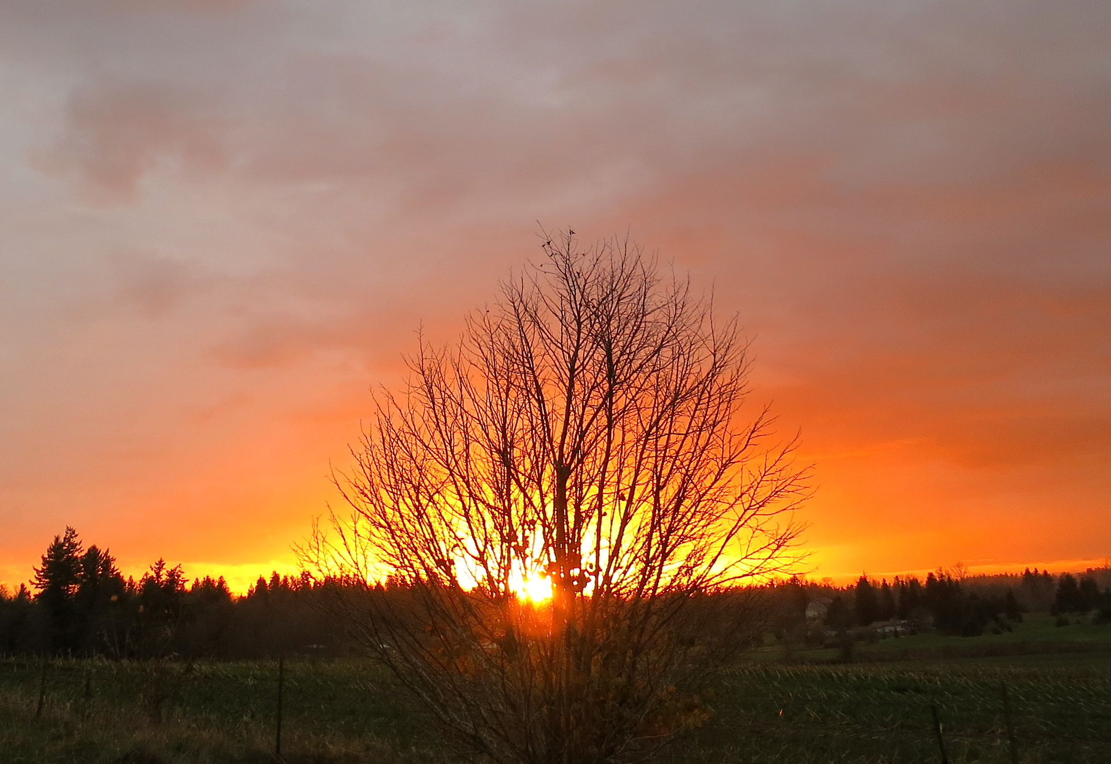 sunset111620