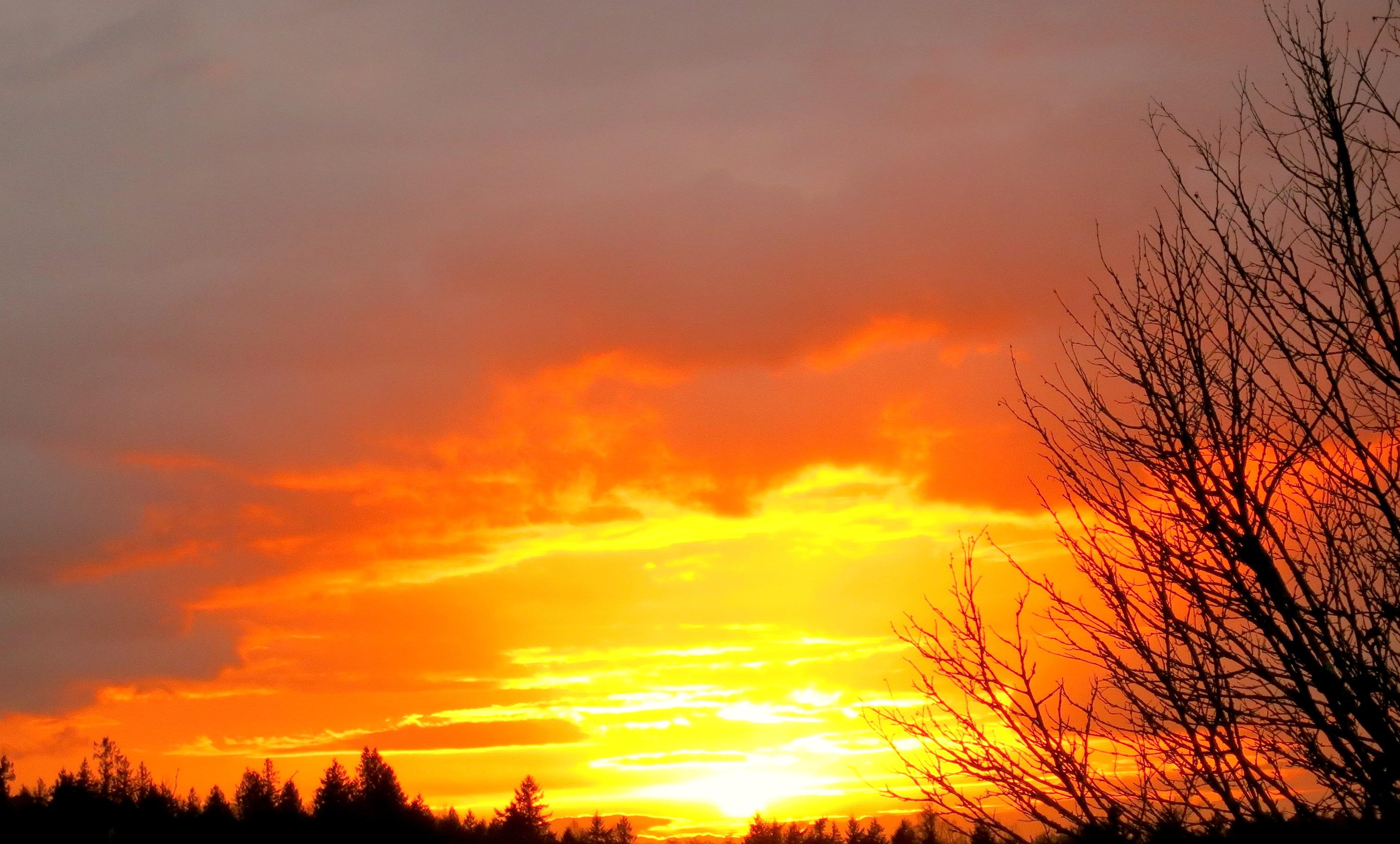 sunset11164