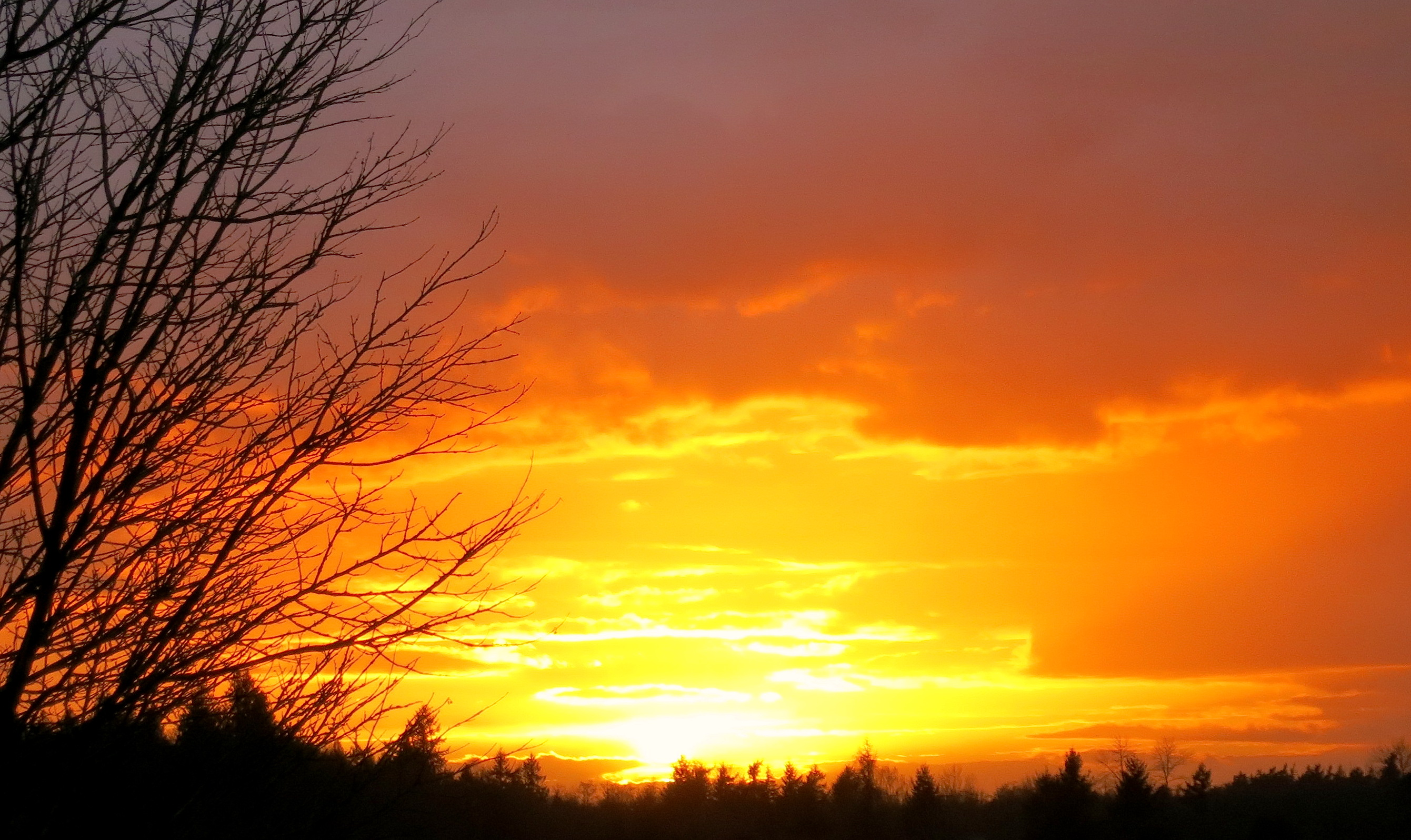 sunset11166