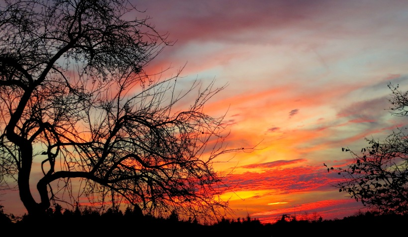 sunset11232