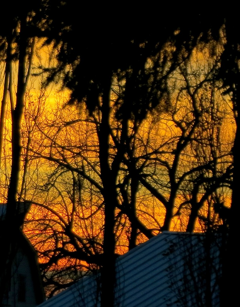 sunset11242