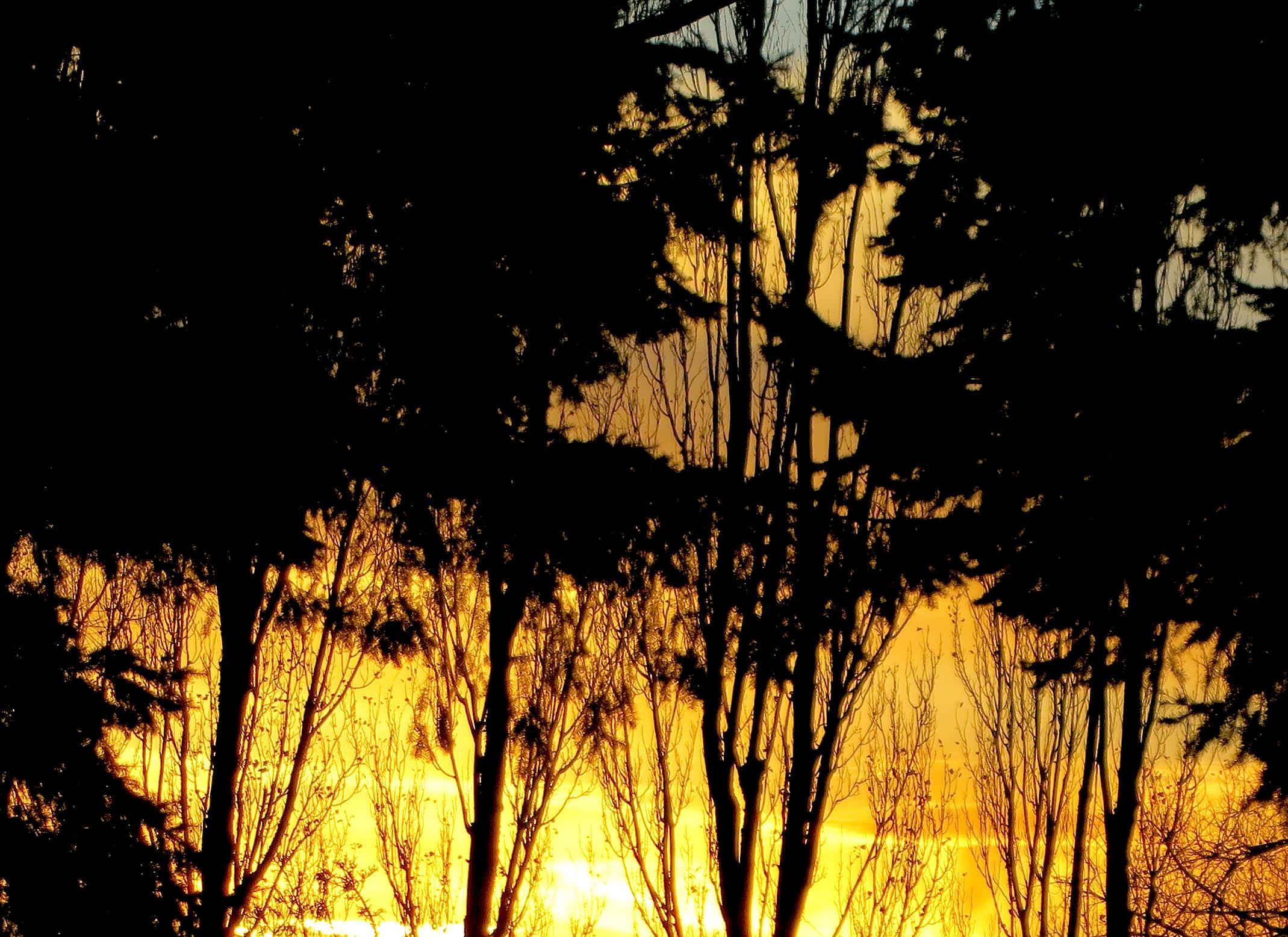 sunset11243
