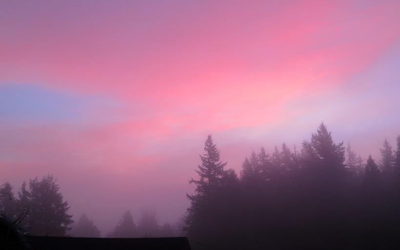dawn117