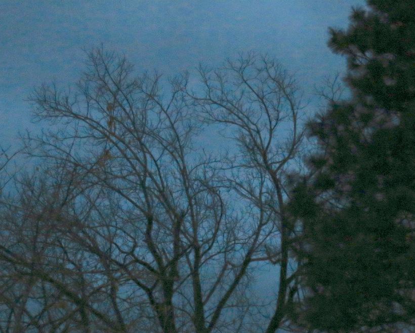 dusk1173