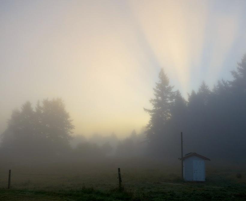 sunrise10191