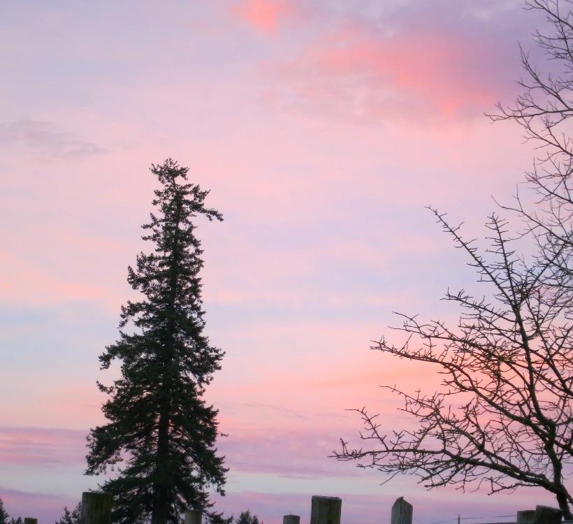 sunrise121141