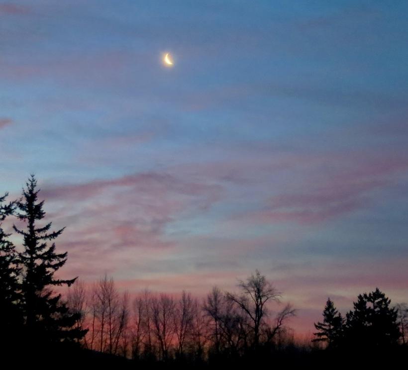 sunrise128146