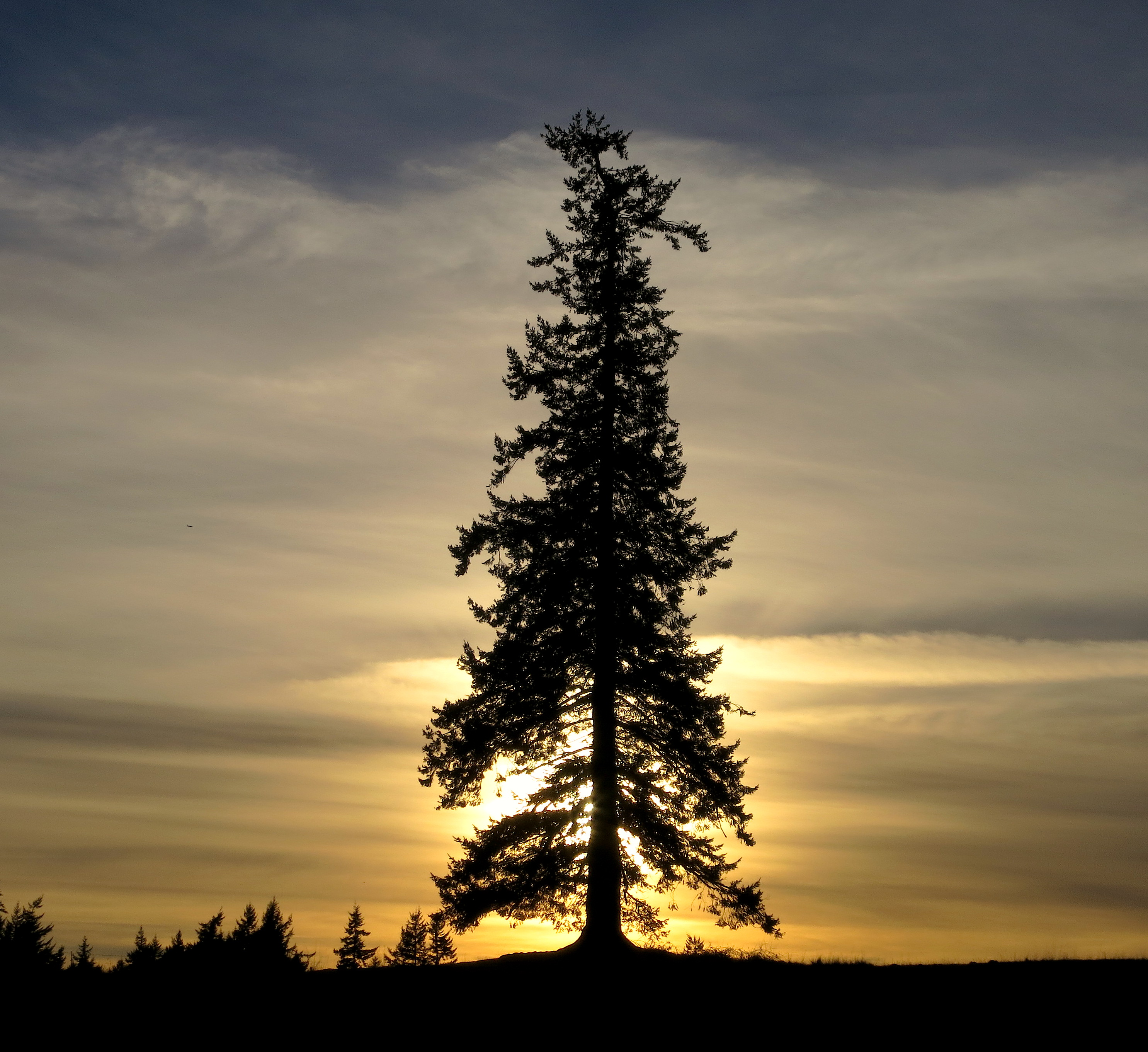 sunset1513
