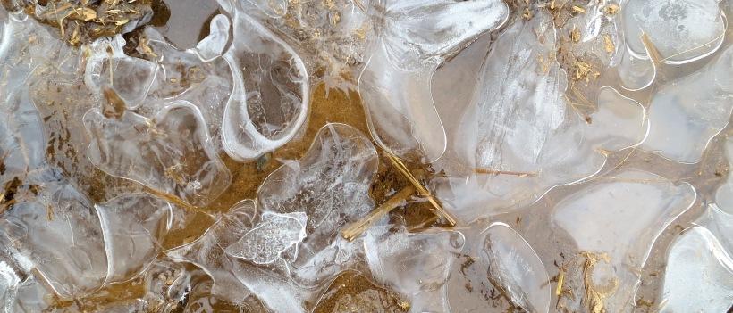 ice213