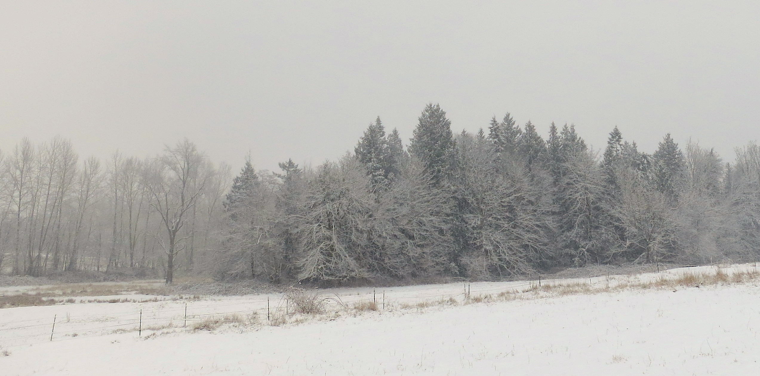 snow12201317