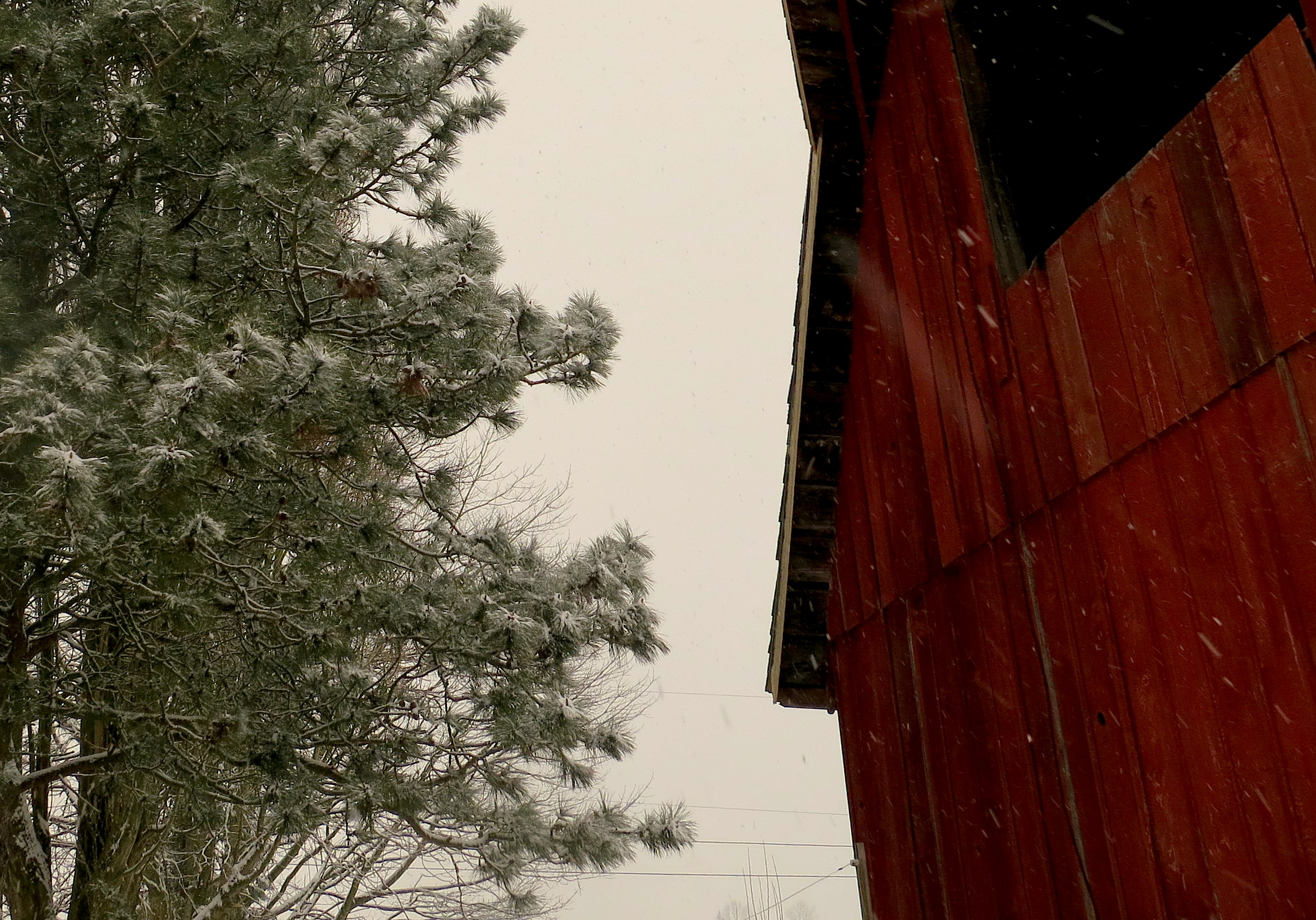 snow12201320