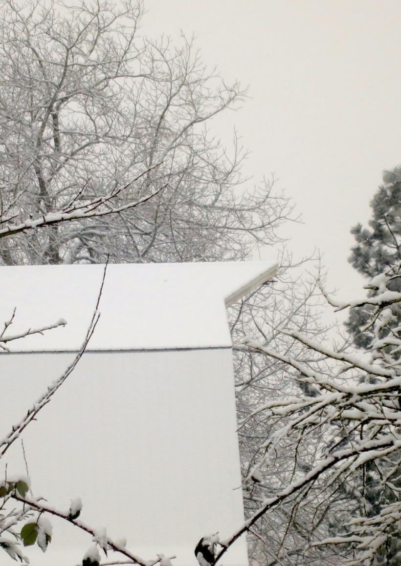 snow12201321